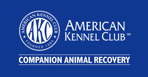 American Kennel Club - Companion Animal Recovery graphic